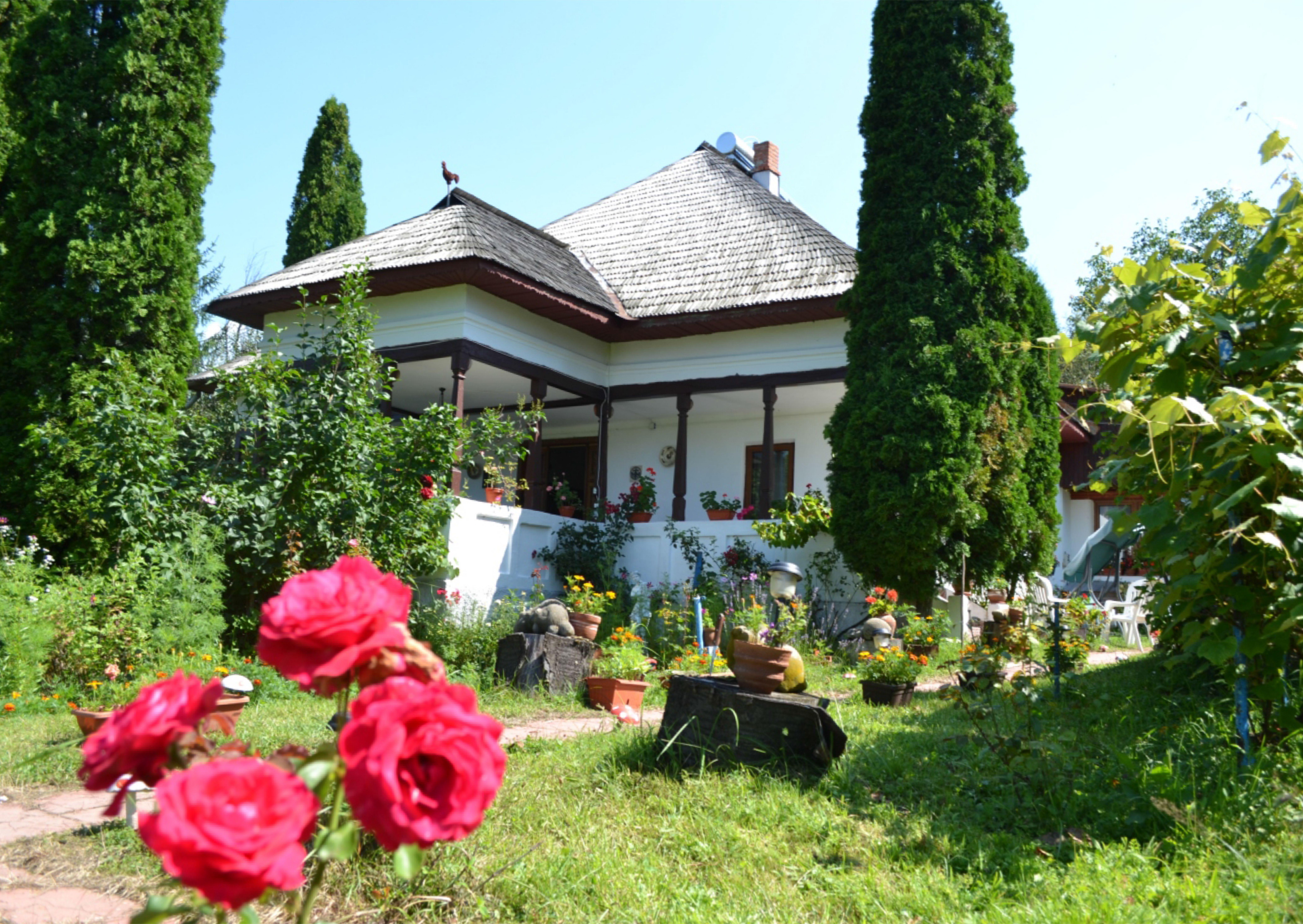 Casa Slătioara - vara